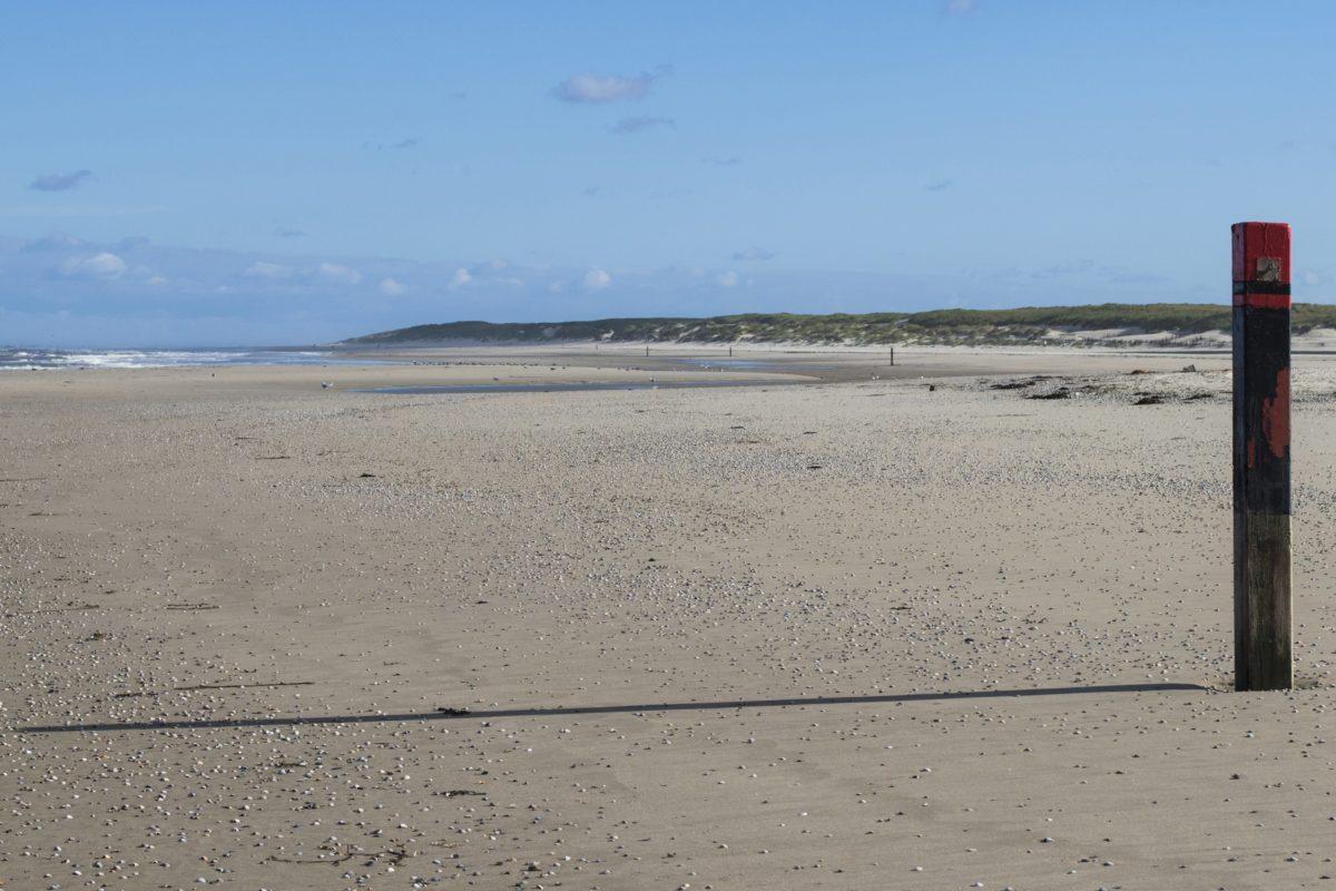 desert, sea, sand, seashore, beach, water, landscape, ocean