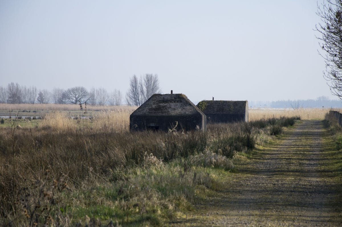 landscape, agriculture, barn, structure, field, blue sky, grass