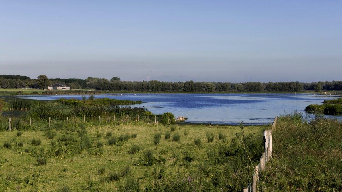 river, water, lake, blue sky, nature, landscape, lakeside, shore