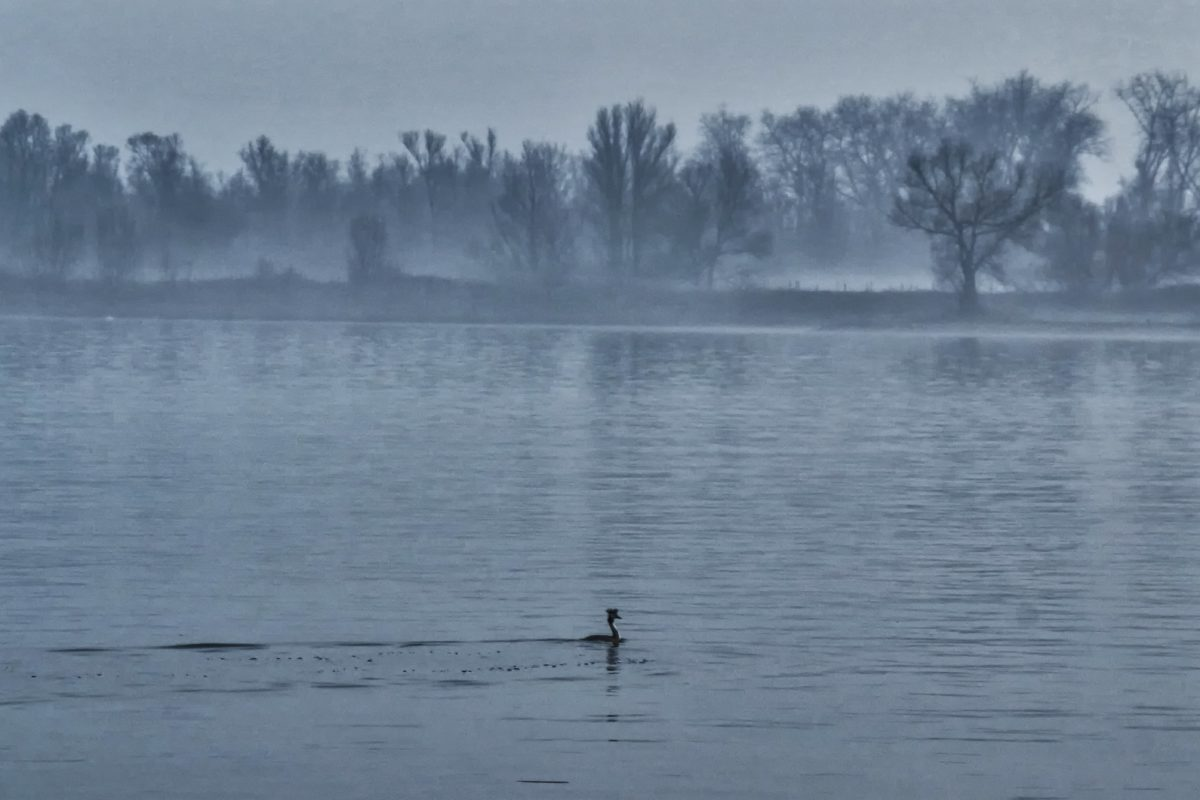 tåge, vand, flod, landskab, refleksion, tåge, sø, Lakeside