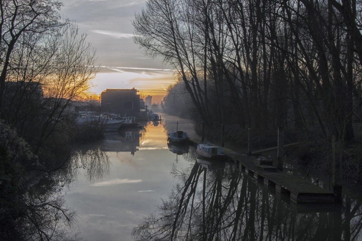 dawn, wood, winter, lake, tree, landscape, fog, shadow, cold, forest