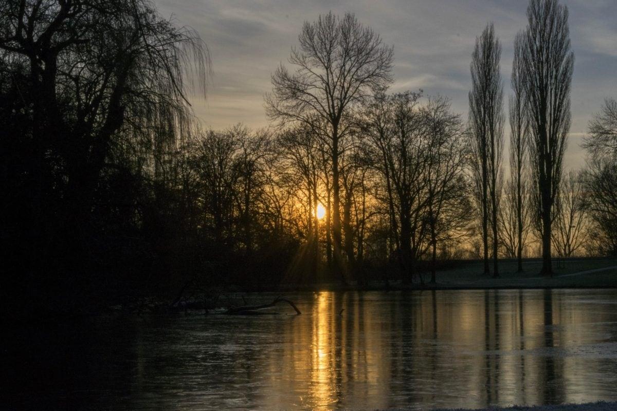 nature, arbre, aube, paysage, rivière, eau, réflexion