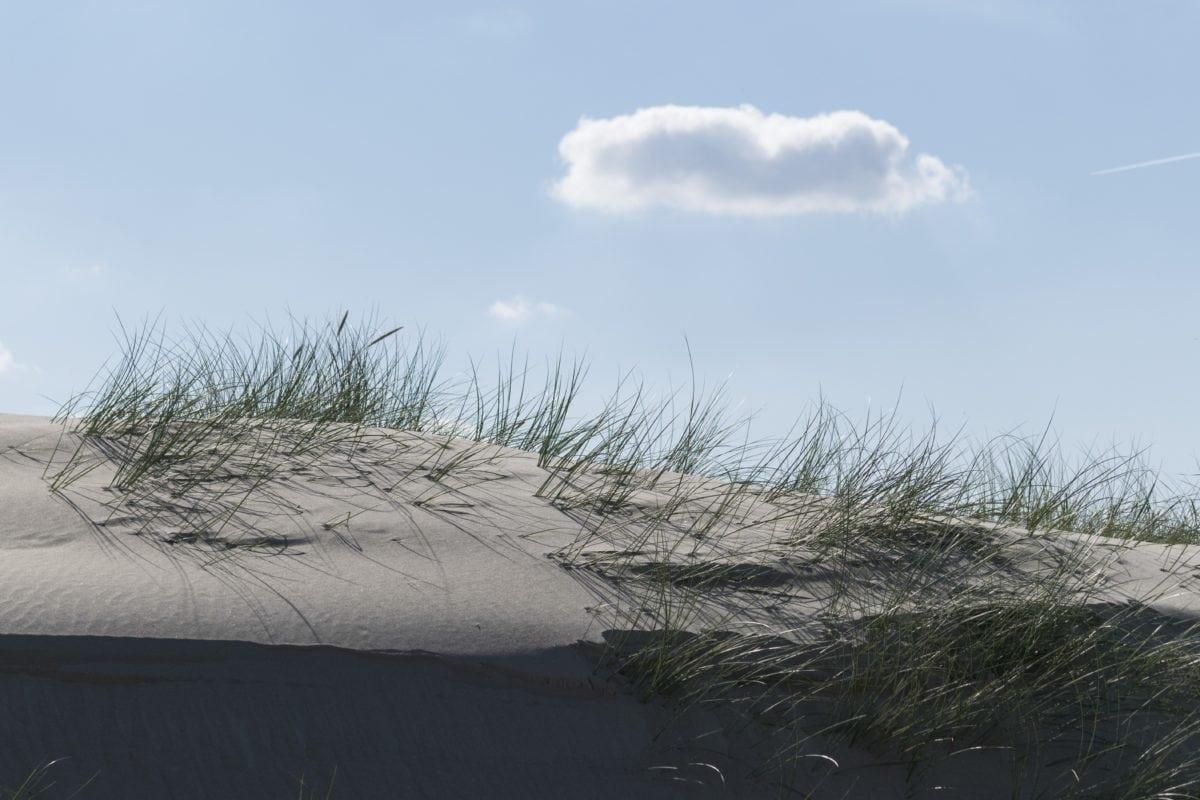 sand dune, landscape, beach, ocean, sky, nature, water