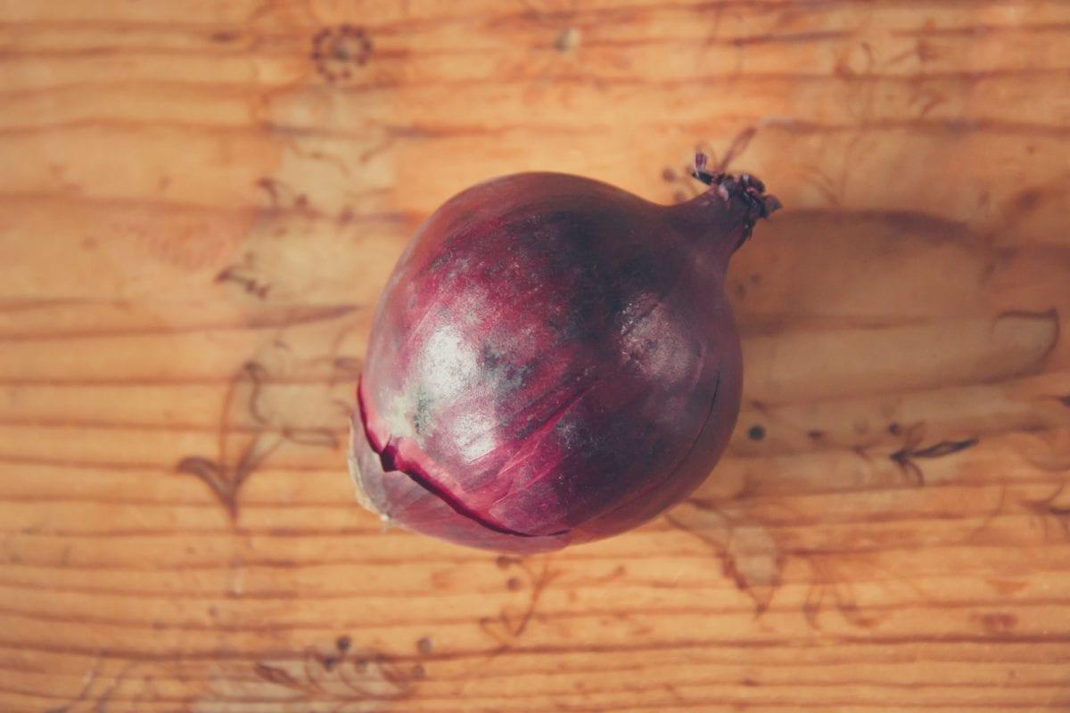 alimento, cebolla, tallo, vehículo, orgánico, de interior