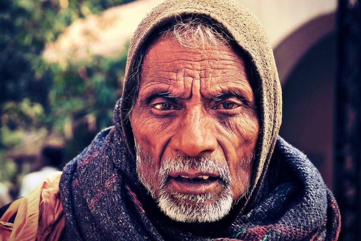 portrait, people, man, person, beard, face, senior