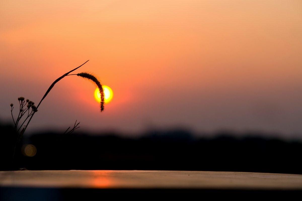 schemering, hemel, zonsondergang, landschap, zon, natuur, zonsopgang, schaduw