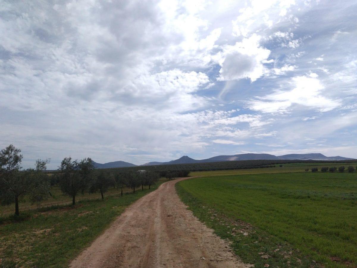 Селско стопанство, овощна градина, небе, пейзаж, път, трева, могила, поле, могила, земя, облак