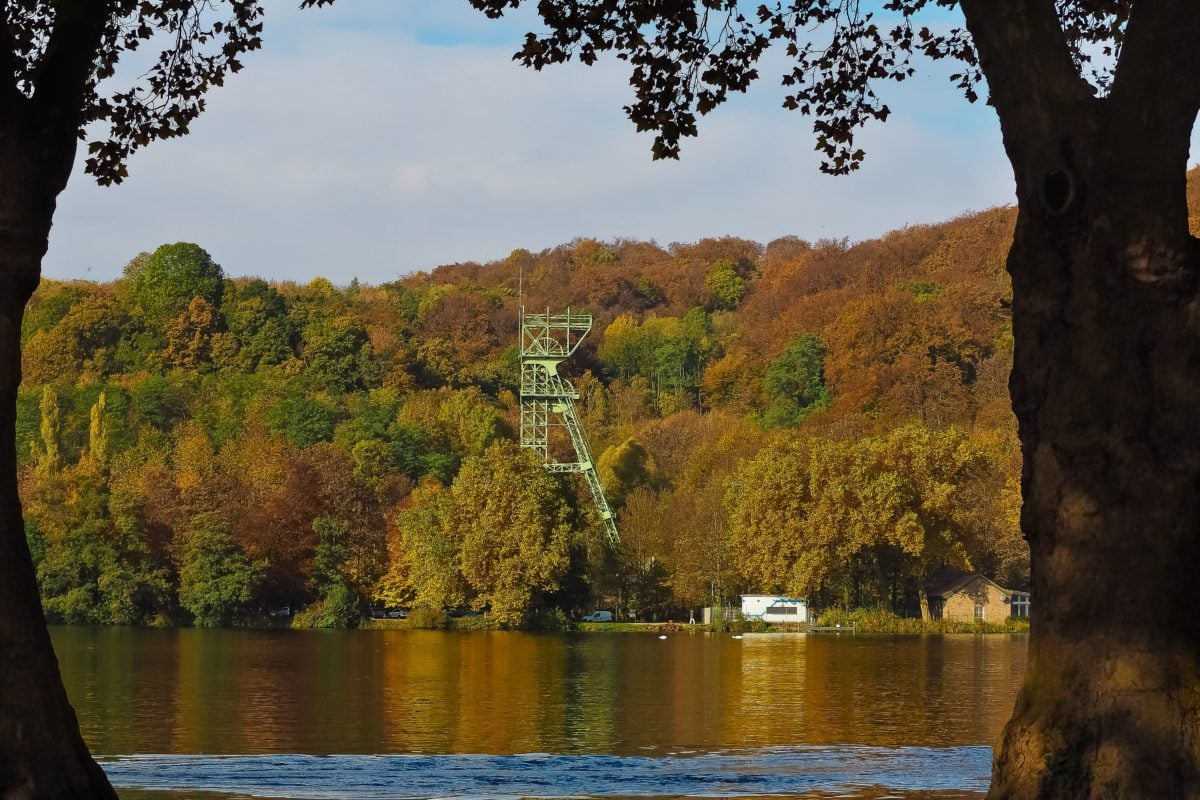 Herbst, See, Baum, Wasser, Natur, Landschaft, Wald, Outdoor