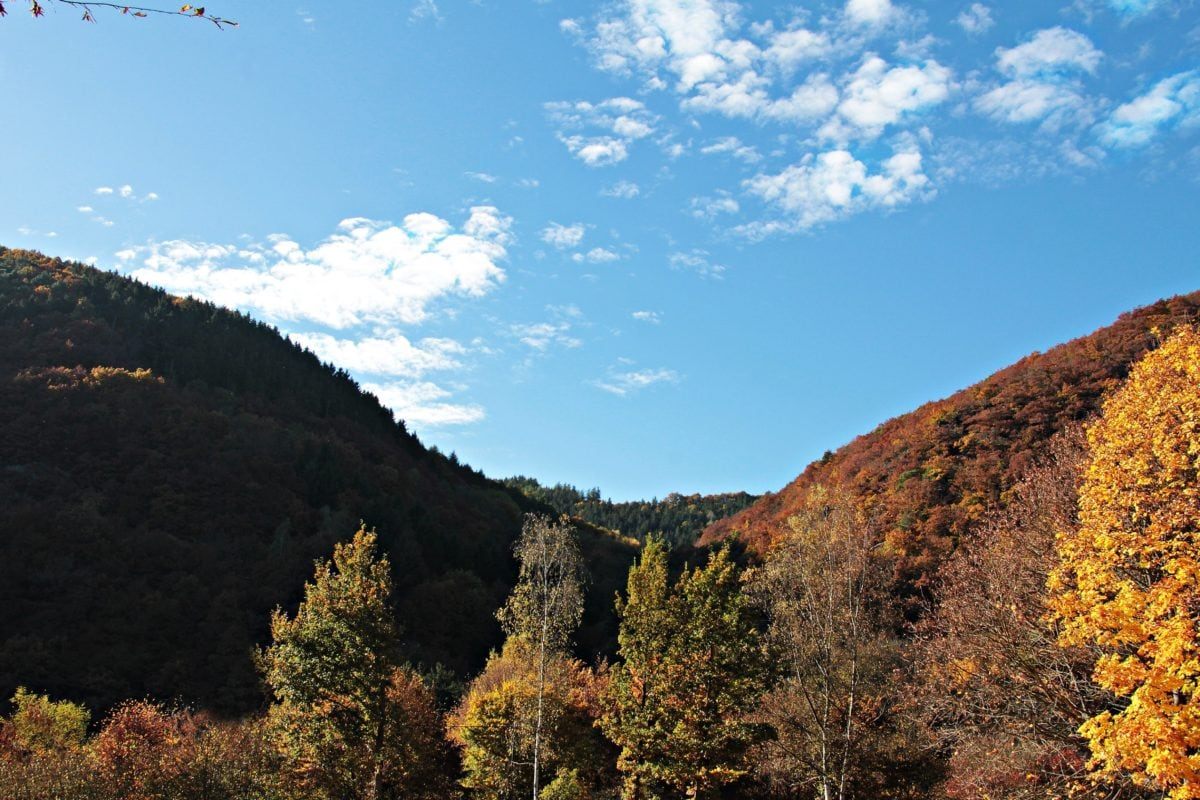 mountain, blue sky, wood, landscape, nature, valley, tree