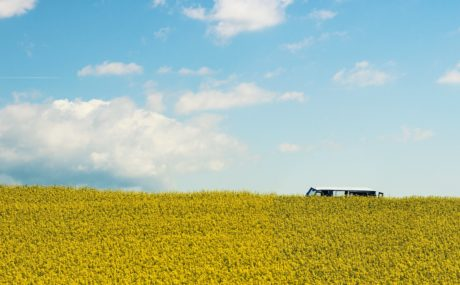 blue sky, landscape, field, cloud, agriculture, rapeseed, hill, vehicle