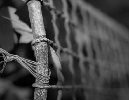 wire, meal, chain, monochrome, iron, cage, object, material, fence
