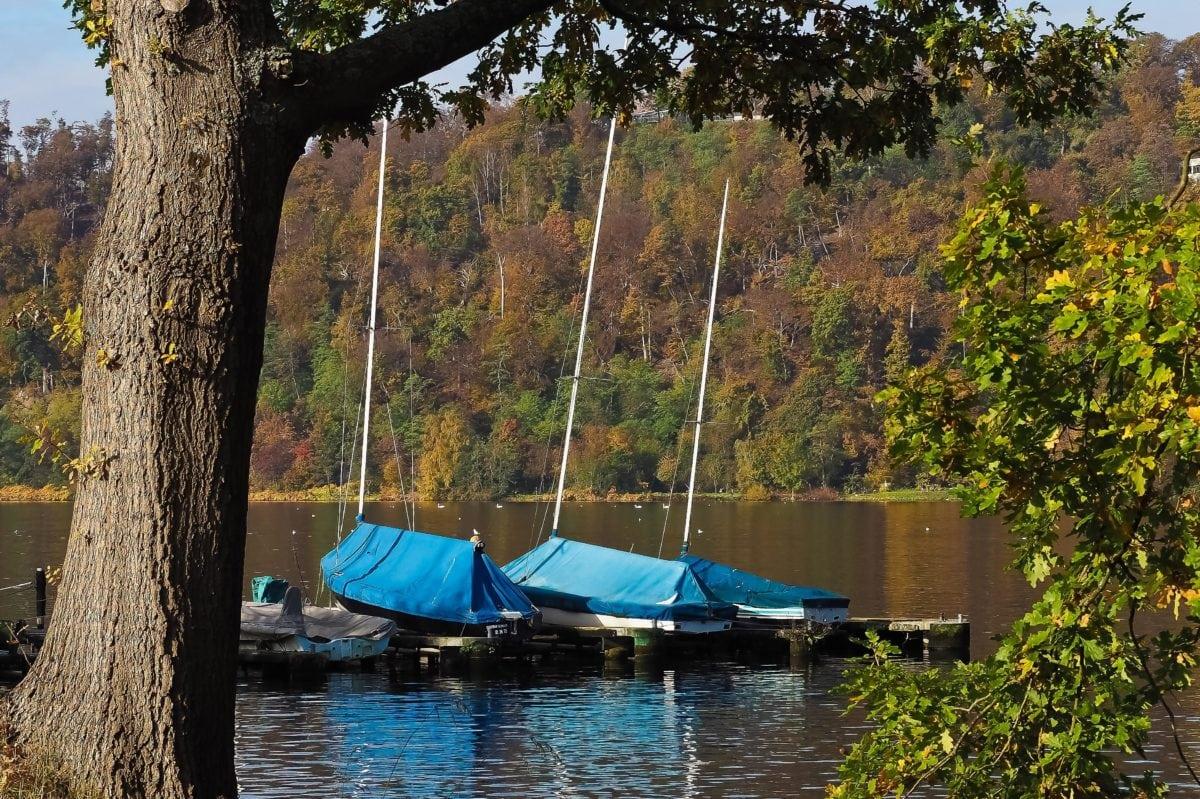 water, national park, coast, nature, tree bark, boat, reflection, outdoor