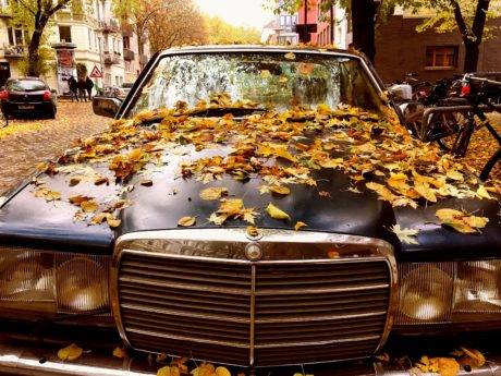 old car, vehicle, Germany, car, transportation, automobile, autumn, outdoor