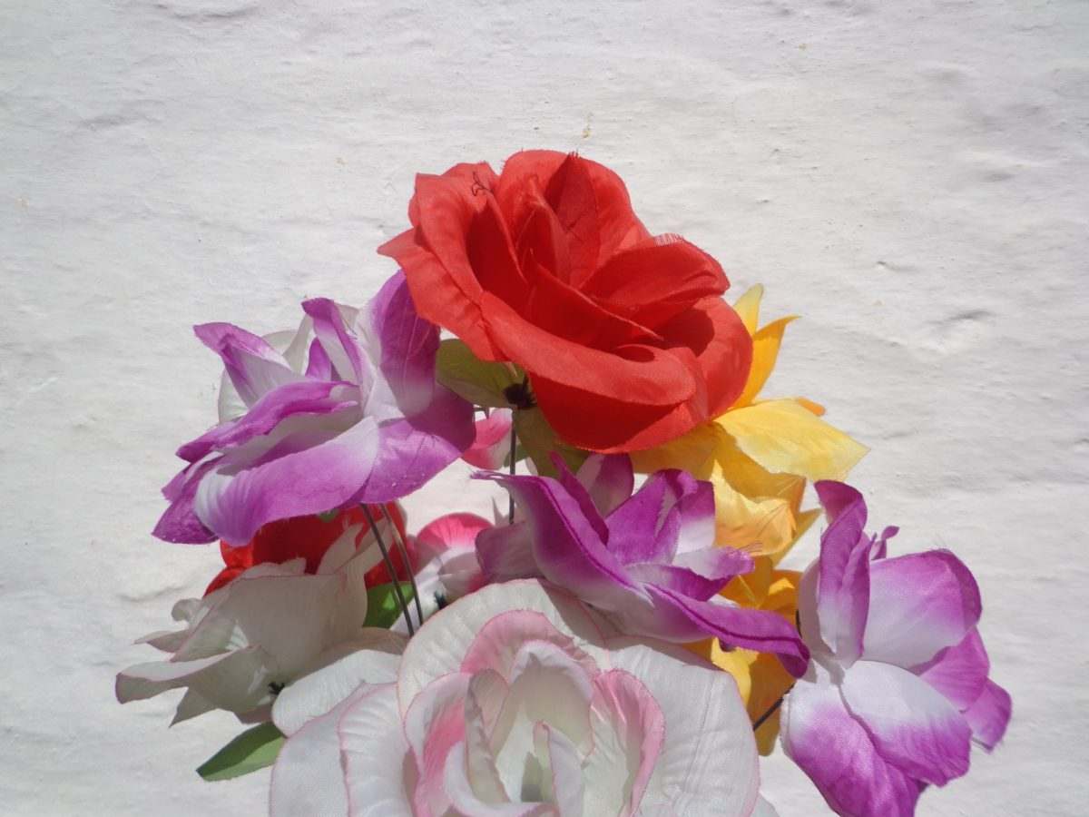 fiore, natura, arrangiamento, petalo, rosa, bouquet di Rose, pianta, fiore