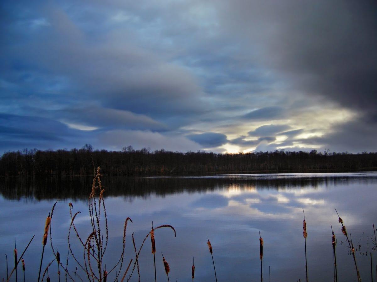 swamp, marshland, lake, water, sunset, landscape, reflection, nature