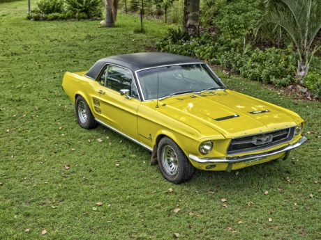 yellow car, vehicle, coupe car, auto, transportation, automobile, lawn