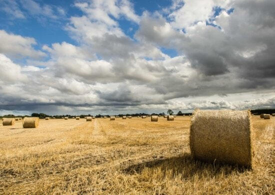 Stroh, Getreide, Heu, Heuhaufen, Roggen, Feld, Landschaft, Landschaft, Landwirtschaft