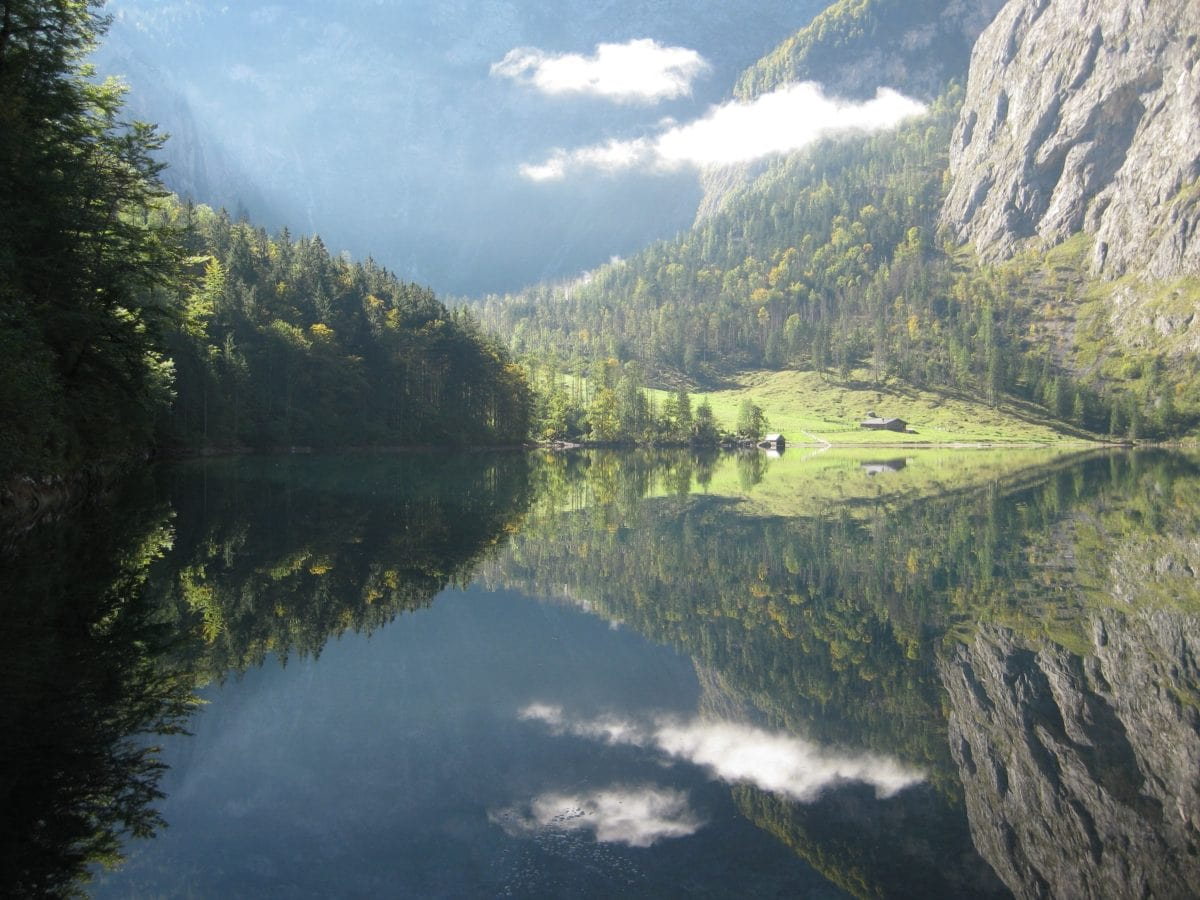 træ, natur, dal, træ, landskab, bjerg, vand, flod