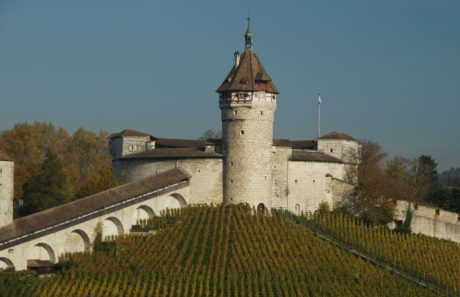 tower, fortress, architecture, castle, sky, old, daylight, vineyard