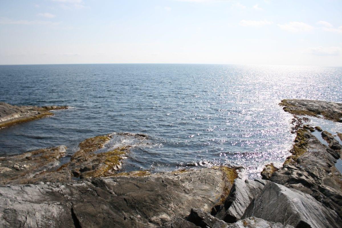 ocean coast, sea, sky, seashore, water, nature, beach, landscape