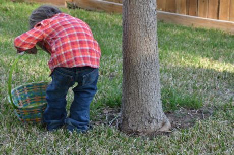 grass, child, outdoor, person, lawn, tree