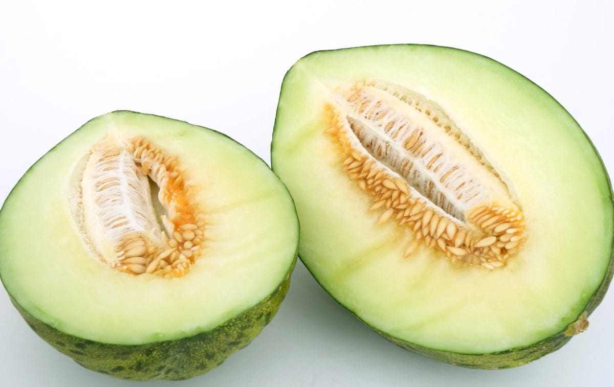 cantaloupe, slice, exotic, nutrition, fruit, melon, honeydew