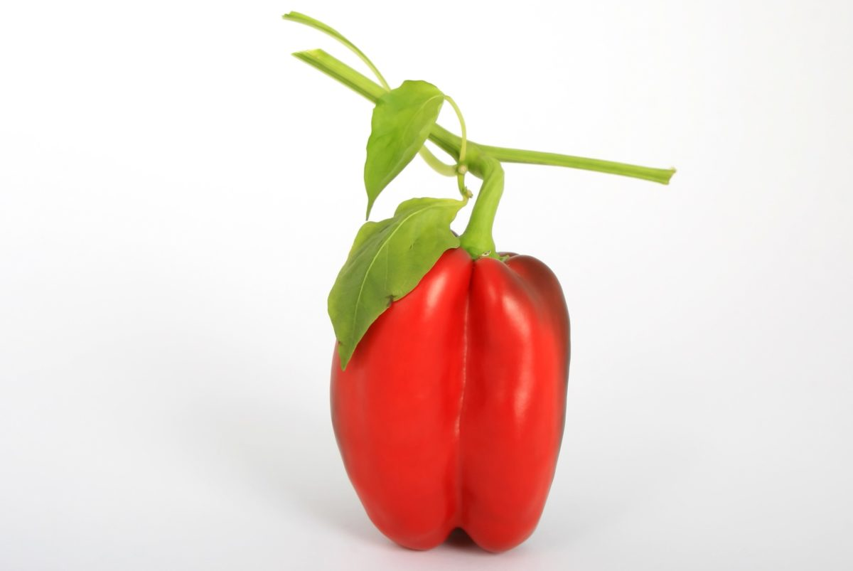 food, red bell pepper, vegetarian, vegetable, indoor, organic