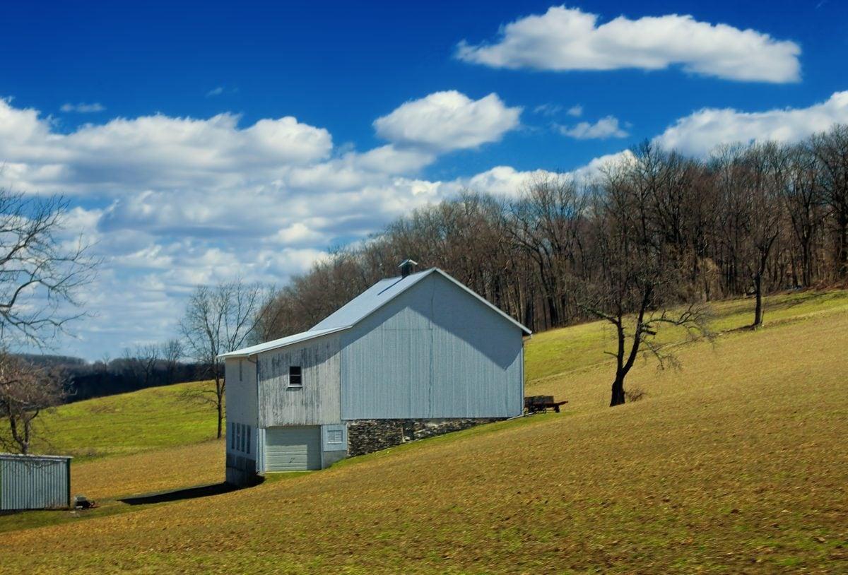 blue sky, barn, grass, landscape, structure, outdoor, tree, field