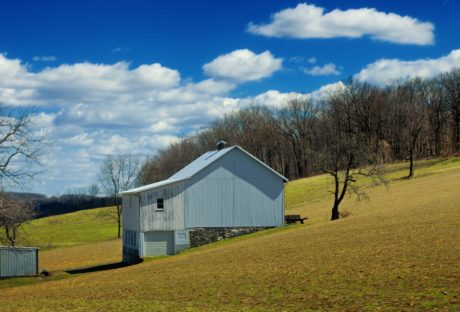 blue sky, barn, grass, landscape, structure, outdoor, tree, field