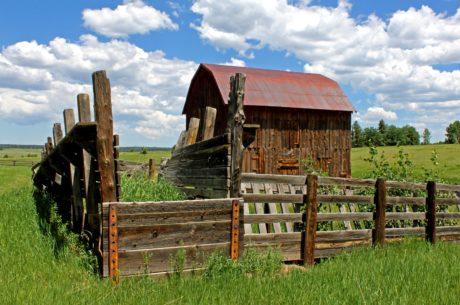 木材、田舎、納屋、草、フェンス、農業、素朴な