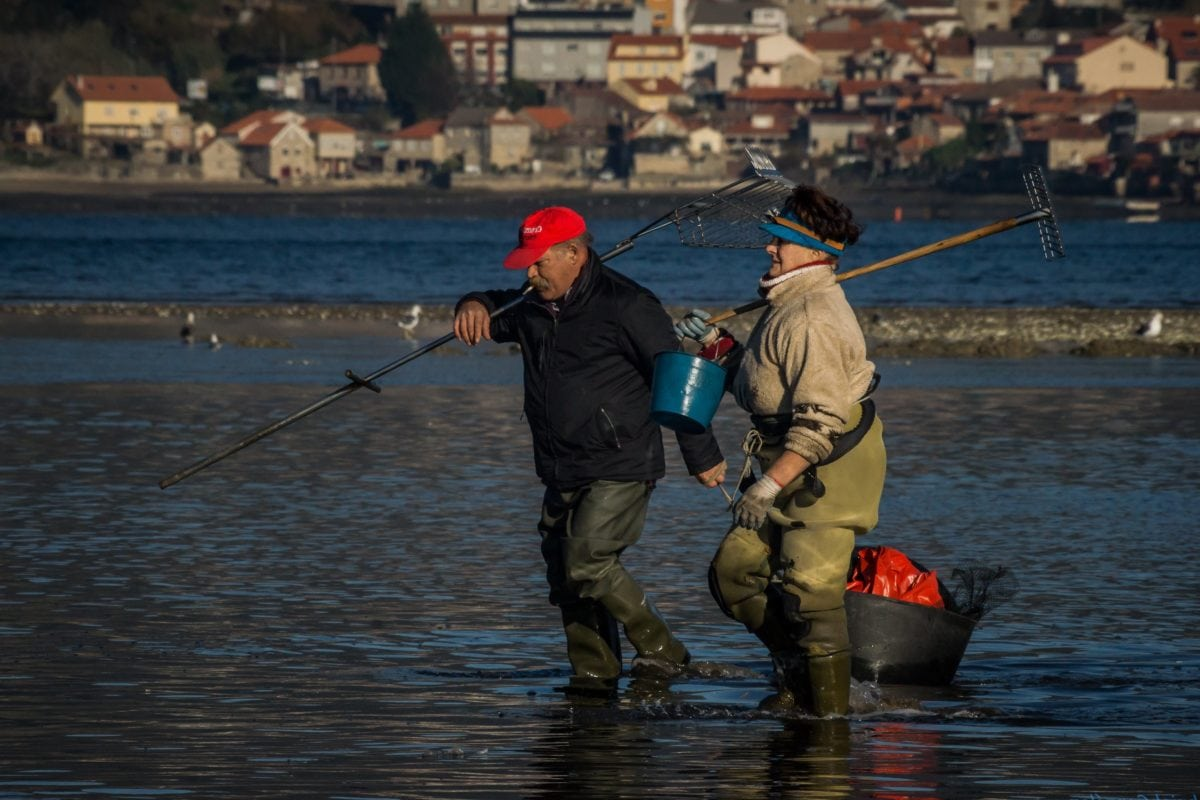 water, fishing, river, people, angler, sport, outdoor