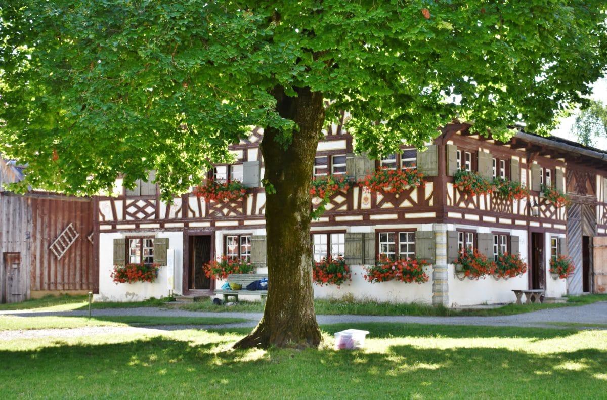 дърво, дърво, къща, дом, морава, архитектура, Градина, трева, морава, фасада