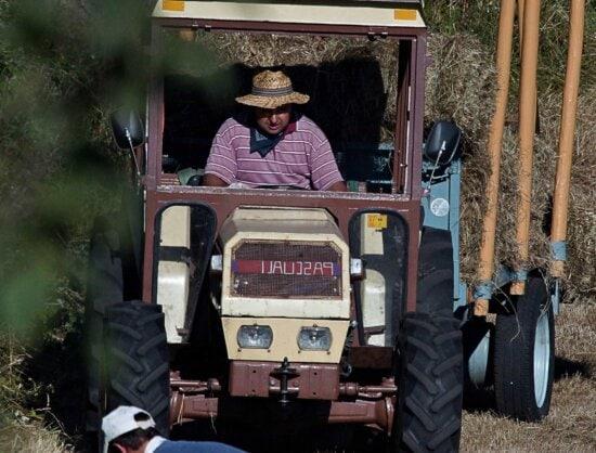 Fahrzeug, Menschen, LKW, Auto, Outdoor, Traktor, Landwirtschaft, Mann, Fahrer