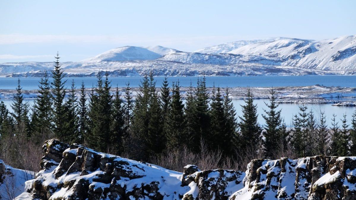Mountain Peak, koude winter, Panorama, hout, ijs, sneeuw, landschap, bos