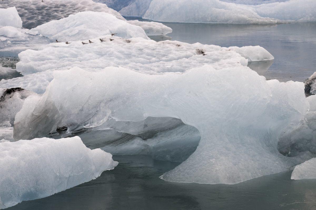 koldt, vand, gletscher, vinter, sne, is, frosne, isbjerg