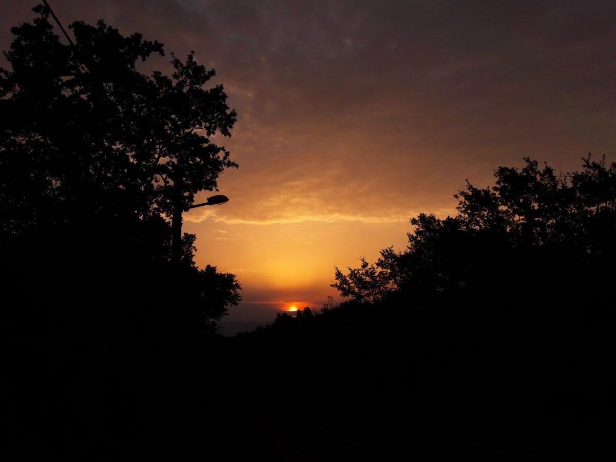 Silhouette, Dämmerung, Landschaft, Sonne, Baum, Sonnenuntergang, Morgengrauen, hinterleuchtet