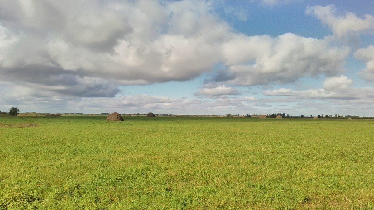 krajina, pole, zemědělství, krajina, tráva, modrá obloha, venkovní, příroda, louka