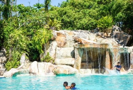 діти, басейн, природа, бірюзова, екзотична, вода, рай, літо, дерево