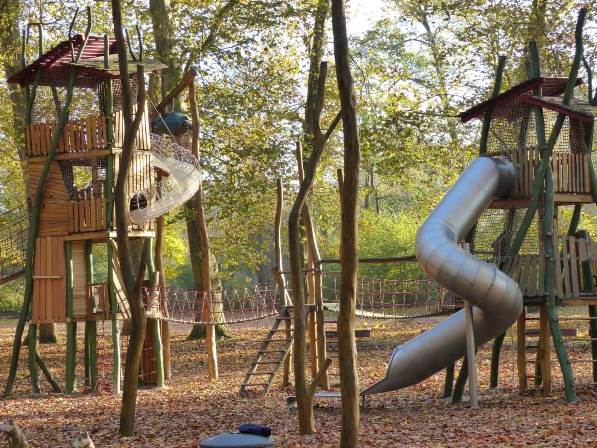 wood, wooden playground, tree, outdoor, outdoor, forest, ground, ledder