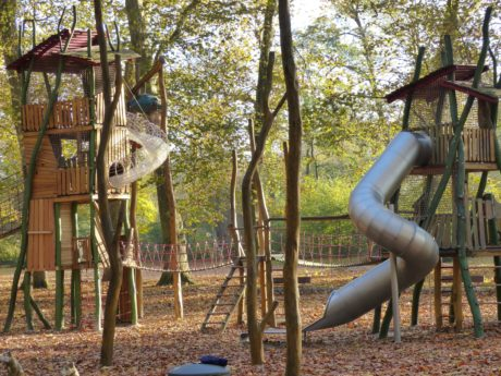 wood, wooden playground, tree, outdoor, outdoor, forest, ground, ledder