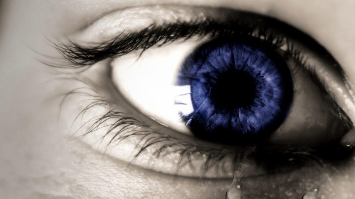 fotomontage, kvinde, mennesker, mode, pige, blåt øje, ansigt, portræt, øjenbryn