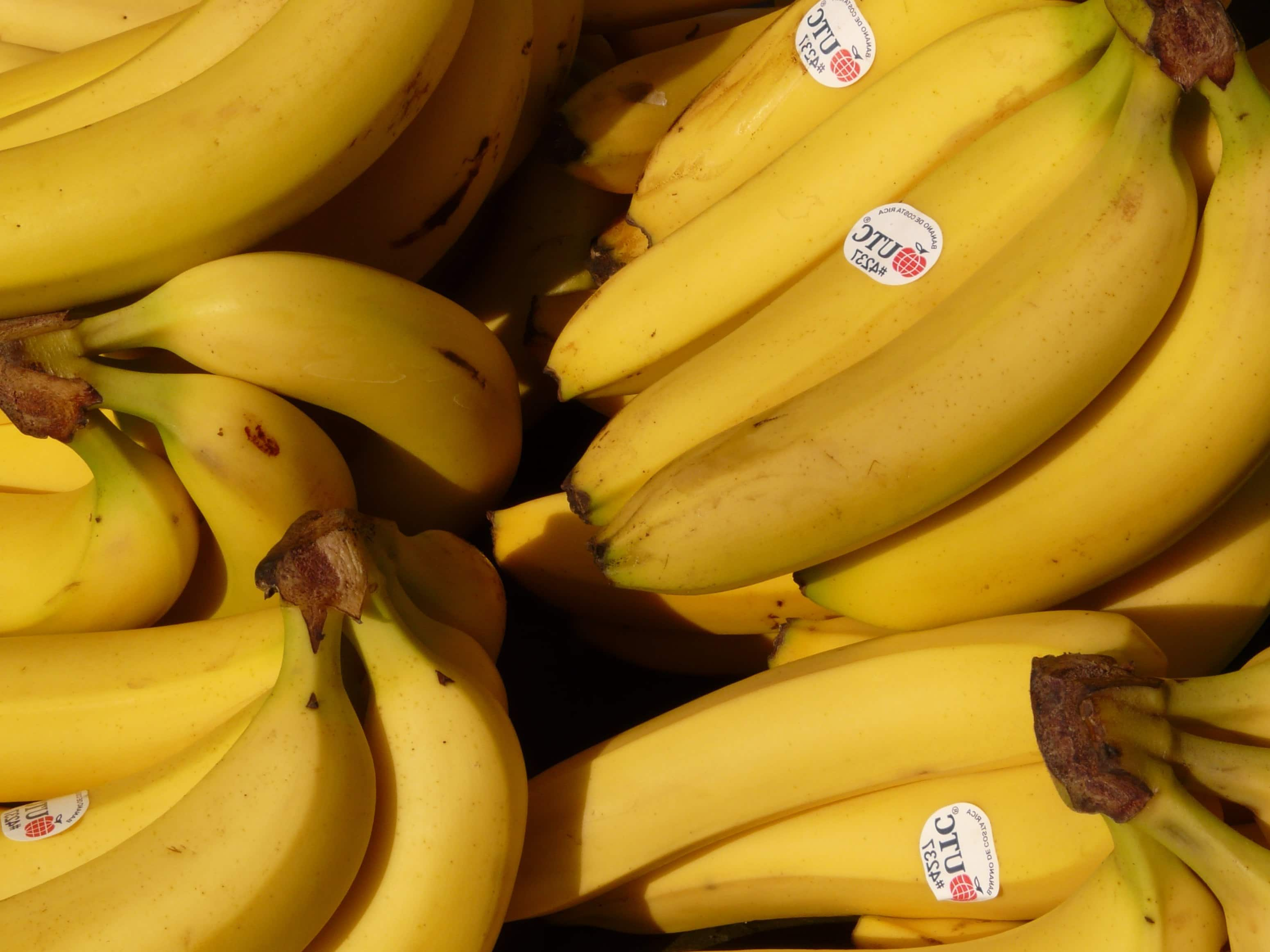 Free picture: banana, ...