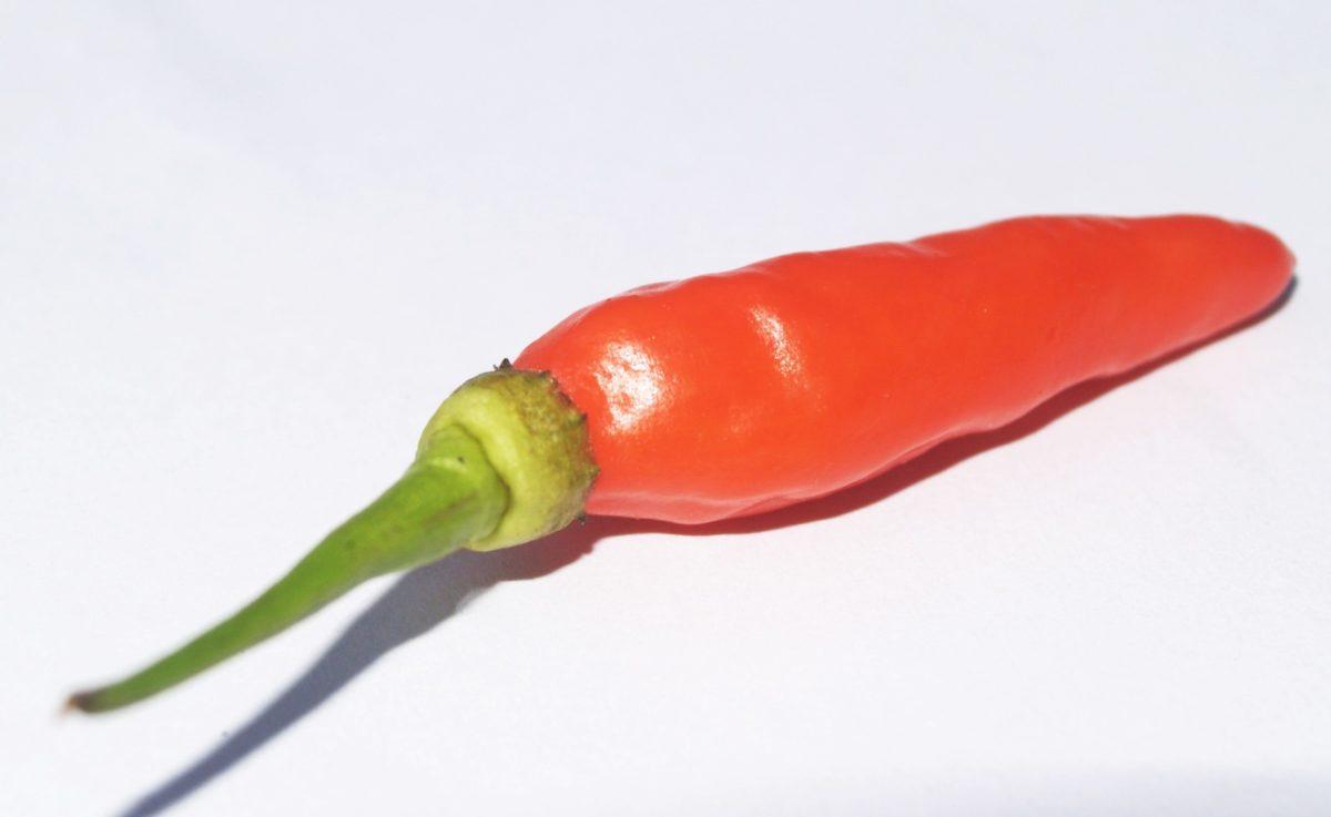 Spice, papryka chili, żywności, warzyw, organiczne, papryka, dieta