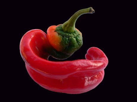 food, capsicum, chili pepper, vegetable, vegetarian, diet, red, vitamin, diet