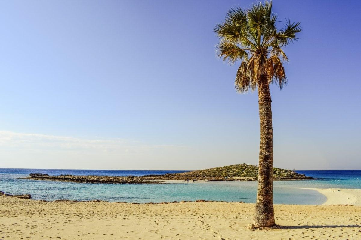 léto, pláž, písek, voda, Palm Tree, oceán, moře, pobřeží, ostrov