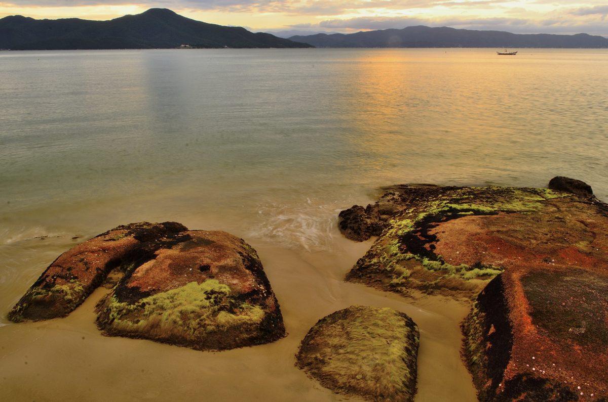 water, beach, landscape, sunset, sea, seashore, ocean, sand