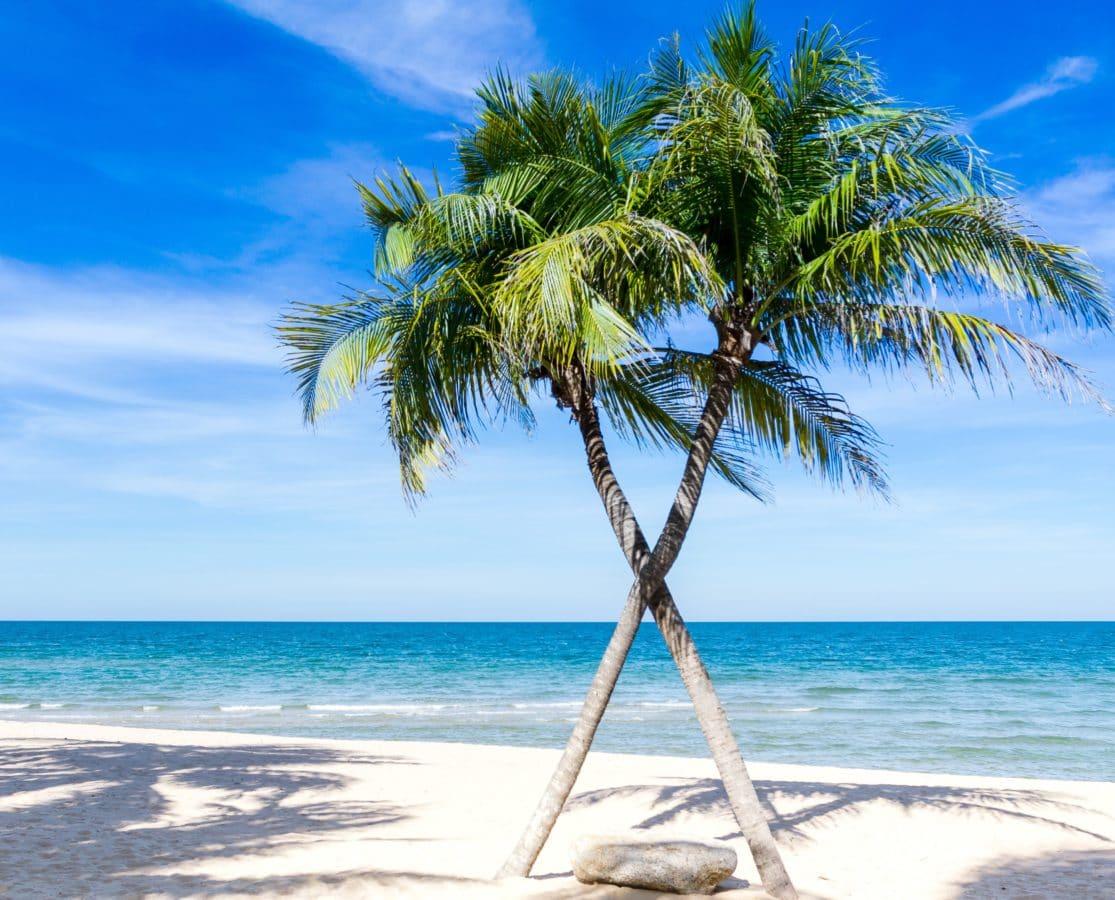 piasek, wyspa, lato, ocean, słońce, morze, turkusowy, plaża
