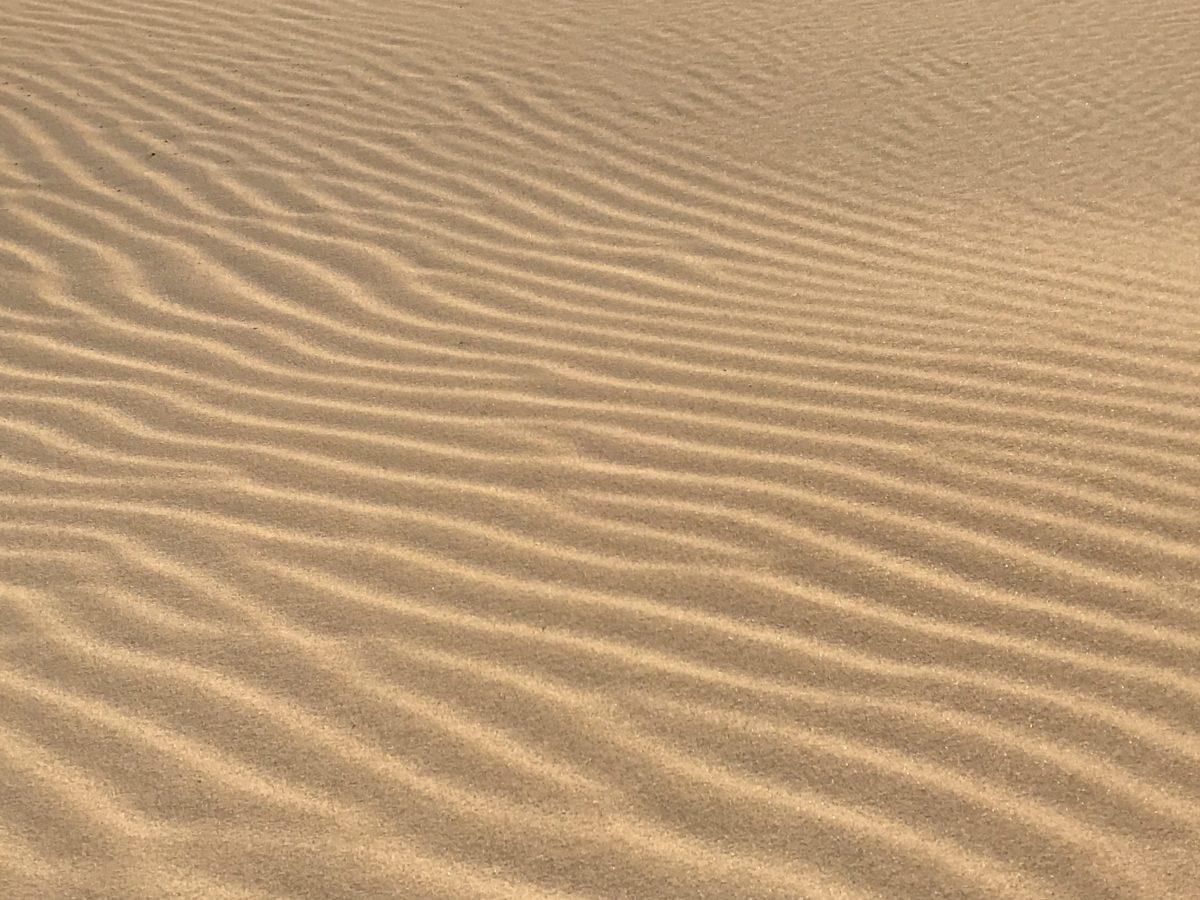 texture, wasteland, sand dune, wave, beach, desert, sand