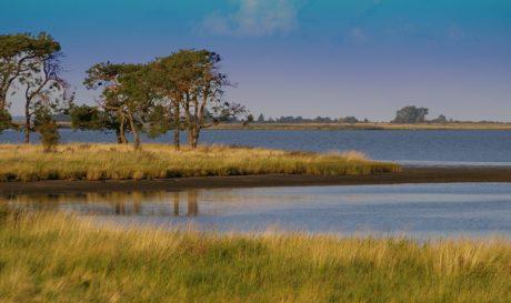 lahan basah, air, lanskap, pohon, Danau, langit biru, refleksi, langit, lakeside