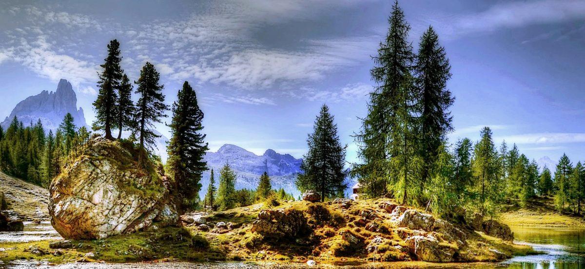 természet, fenyő, fa, hegy, kék ég, hegy, táj, fa, erdő